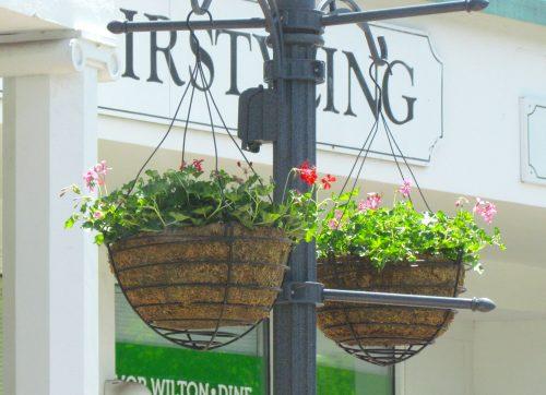 Surprising Result for Making Wilton Beautiful's Flower Basket Fundraising Program