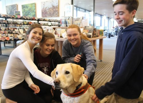 Wilton Library Will Have Extra Hours and Therapy Dogs for Finals Week